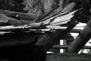Dach mit Lärchenschindeln