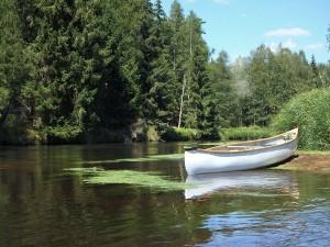Weißes Boot am Ufer