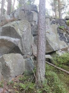 Felsen im Wald