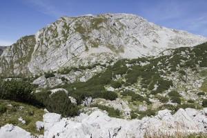 Der Gipfel des Kahlersberges