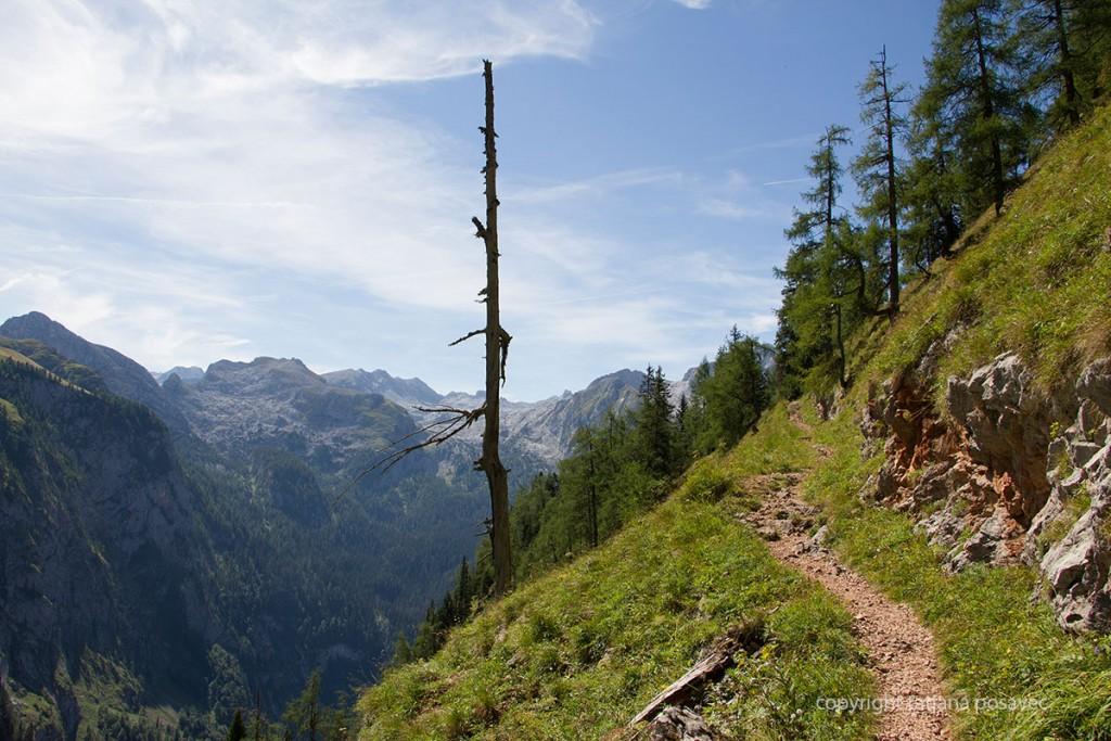 Der Landtalsteig im Hagengebirge