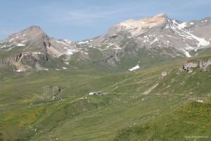 Alp Curtinatsch vor dem Gelbhorn