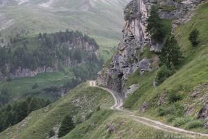 Dieser Weg führt auch auf die Alp Curtginatsch