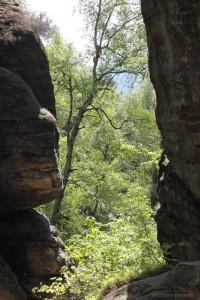 Blick zurück auf dem Wildschützensteig