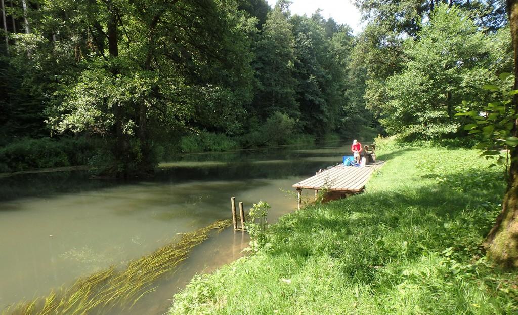 Steg am Fluss