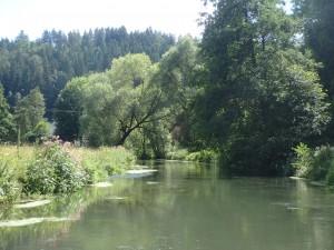 Flussbiegung vor der Harnbachmühle