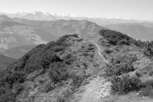 Der Pfad das Röthenegg herauf