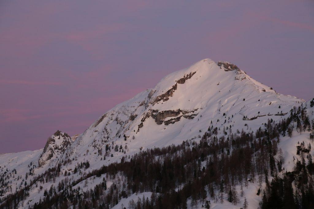 Praghorn im Sonnenuntergang